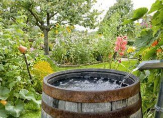 zalijevanje vrta