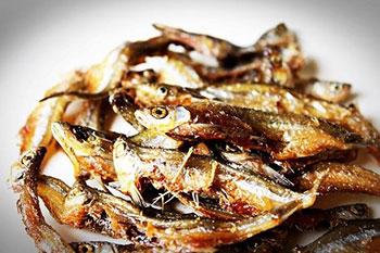 alergija na ribe
