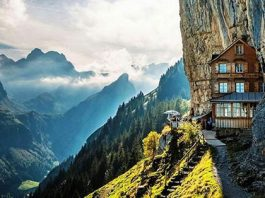restoran planina