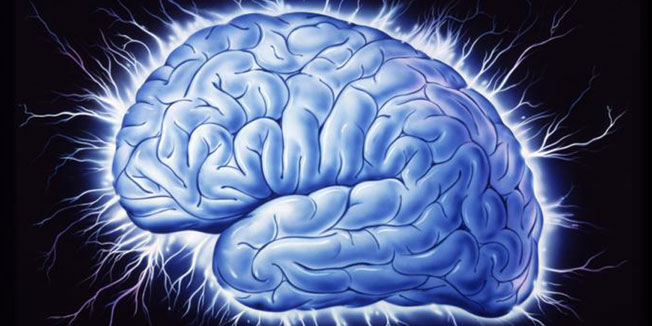 mozgici