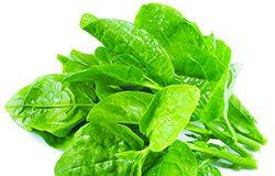 zelenis